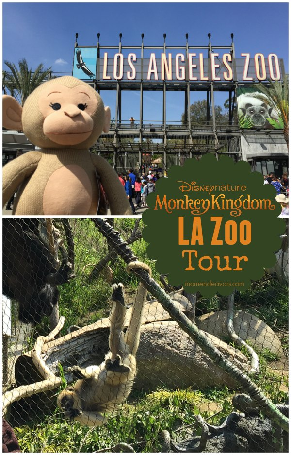 LA Zoo Monkey Kingdom Tour