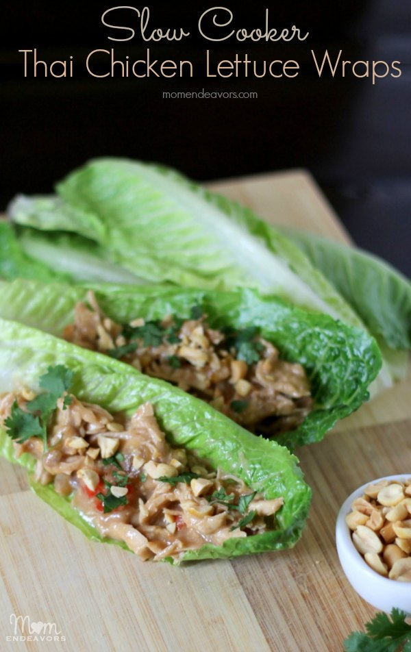 Thai Chicken Wraps Recipe — Dishmaps