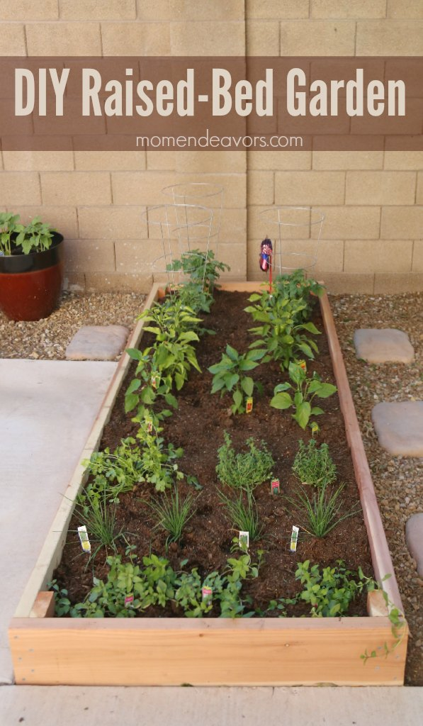 Simple DIY Raised-Bed Garden