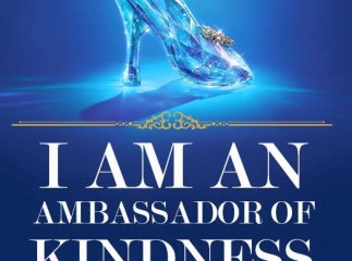 Cinderella-One-Million-Words-Of-Kindness