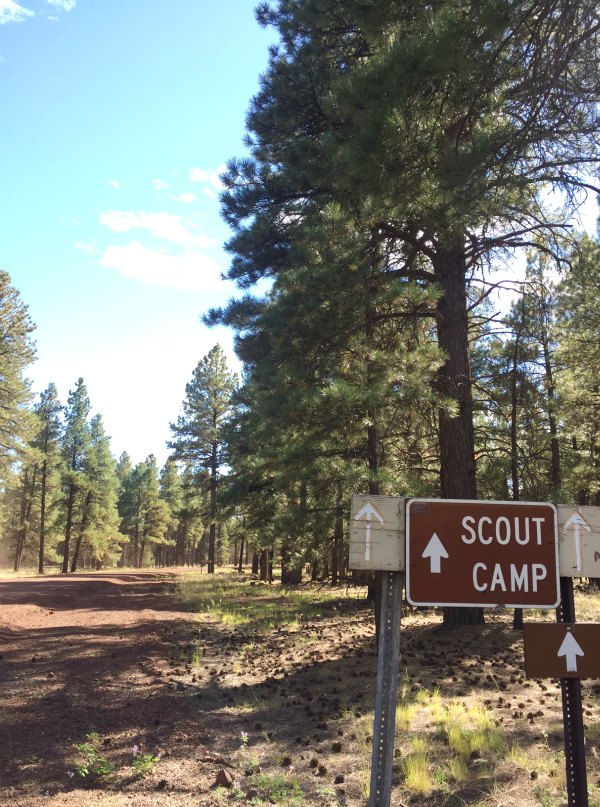 Scout Family Camp