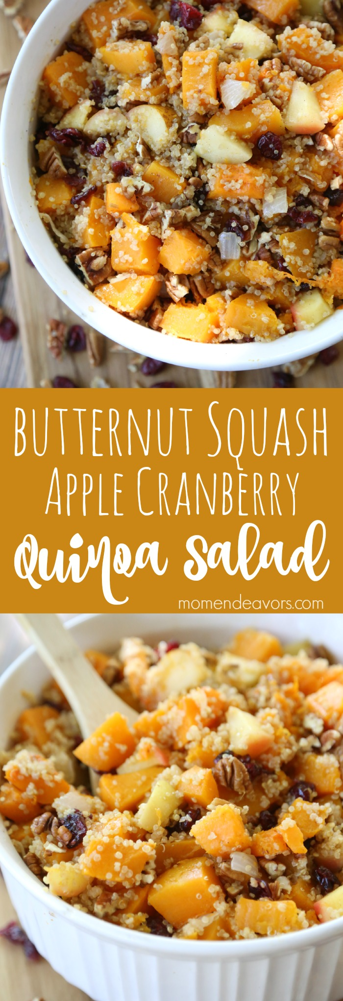 Butternut Squah Apple Cranberry Quinoa Salad
