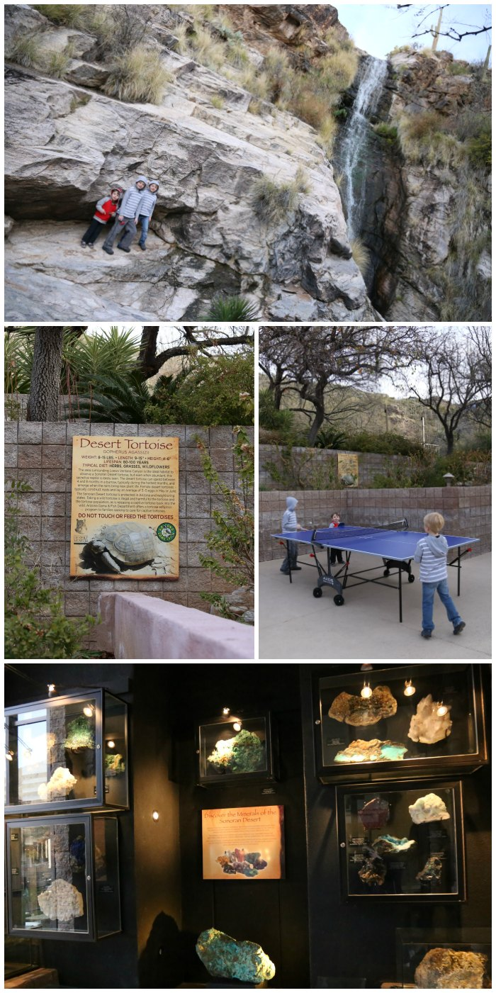 Loews Ventana Canyon Activities
