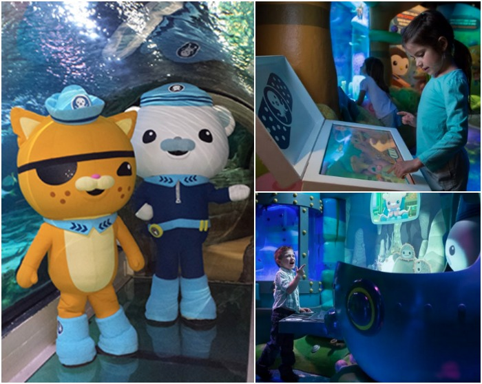 Octonauts at Sea Life Arizona