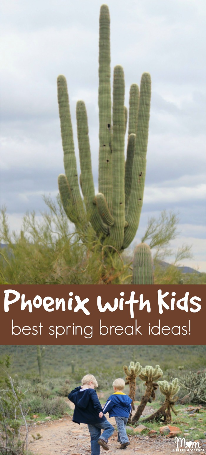 Phoenix Spring Break Ideas with Kids