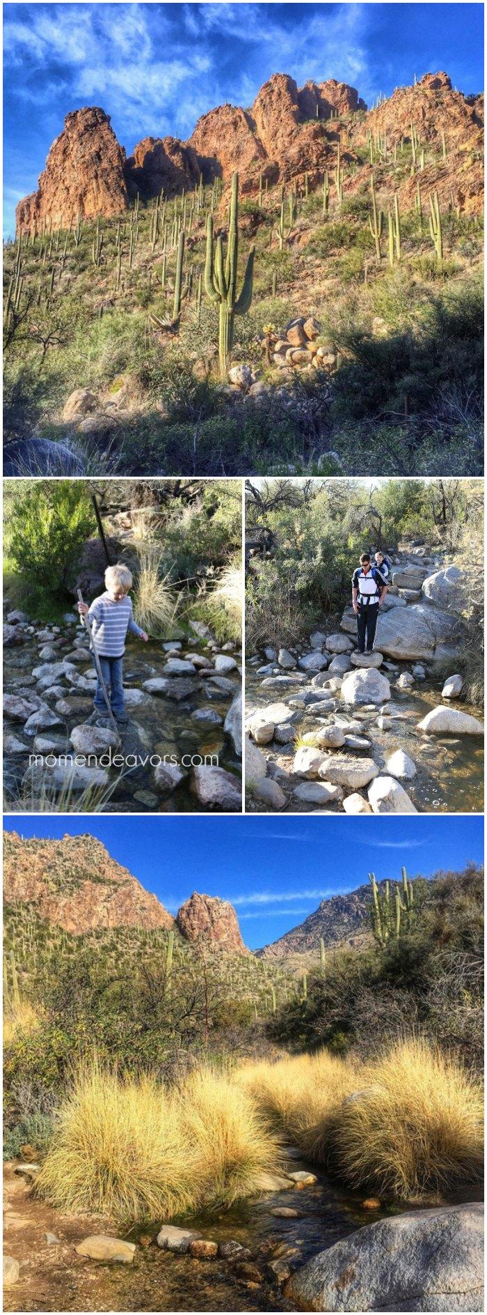 Ventana Canyon Hike Tucson