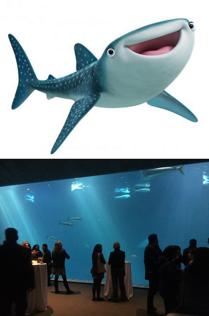 Finding Dory Whale Shark