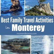 10 Best Family Travel Activities in Monterey, California
