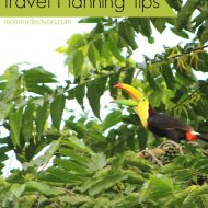 10 Costa Rica Travel Planning Tips