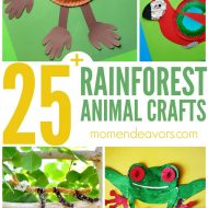 Rainforest Animal Crafts