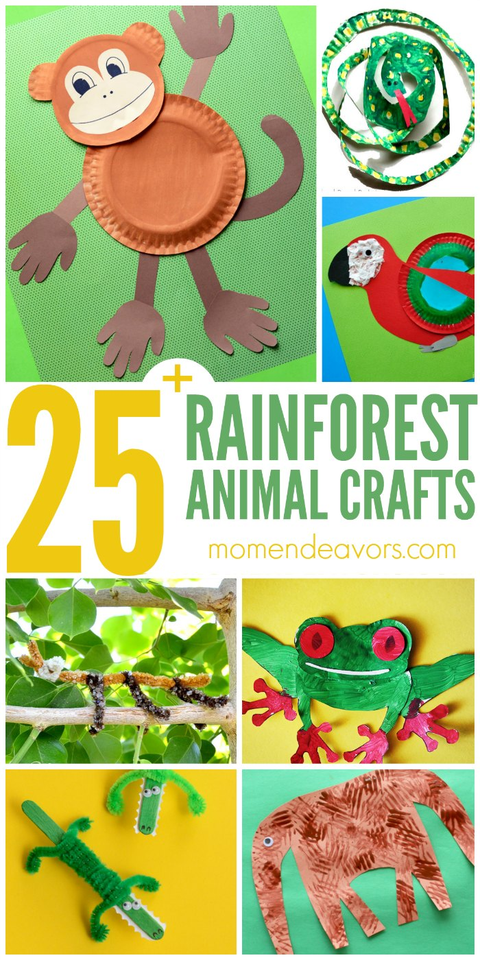 Rainforest Animals Arts And Craft For Kids