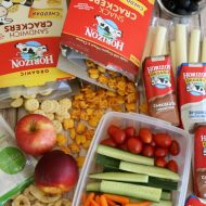 Back to School Lunches – Ideas for Easy Prep