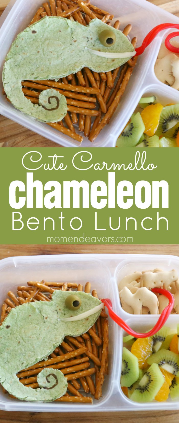 Chameleon Bento Lunch