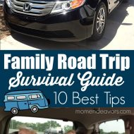 Family Road Trip Survival Guide: 10 Best Tips for a Successful Trip!