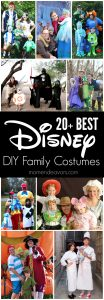 20+ Best Disney DIY Family Costumes