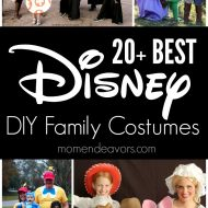 20+ BEST DIY Disney Family Costumes