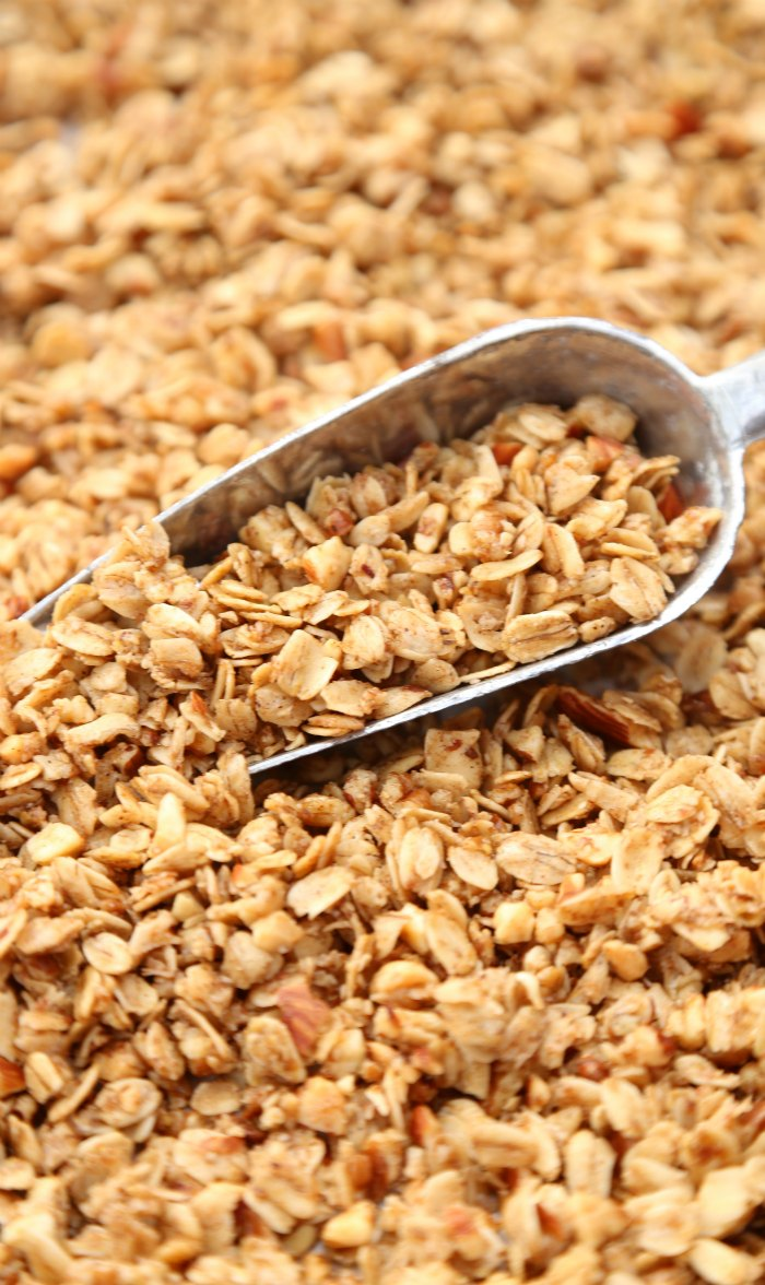 Honey Nut Granola Scoop