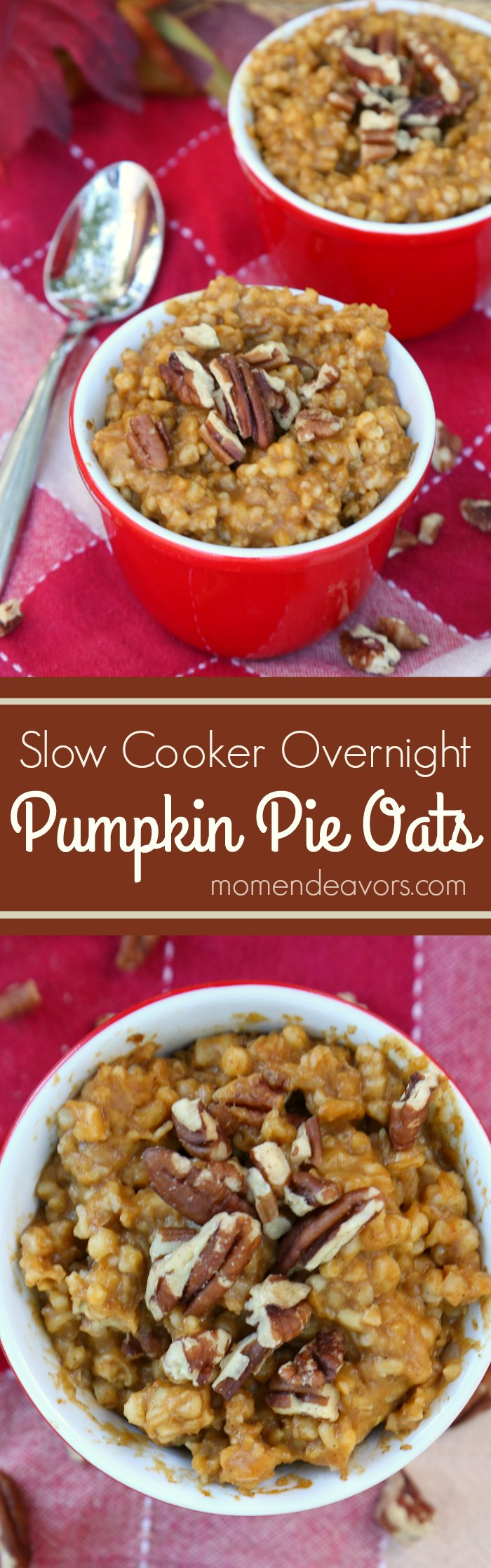 slow-cooker-pumpkin-pie-steel-cut-oats