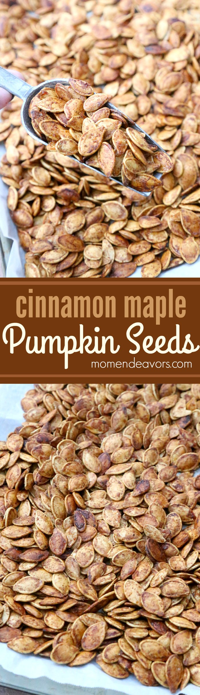 Cinnamon Maple Roasted Pumpkin Seeds