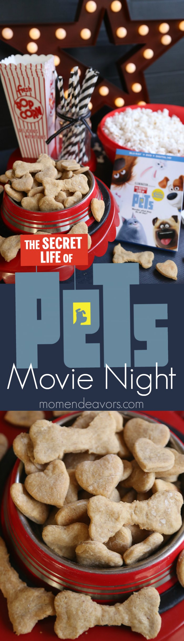 secret-life-of-pets-movie-night-party