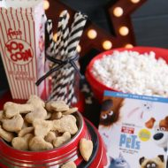 Homemade Dog Treats – The Secret Life of Pets Movie Night