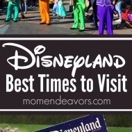 Best Times to Go To Disneyland