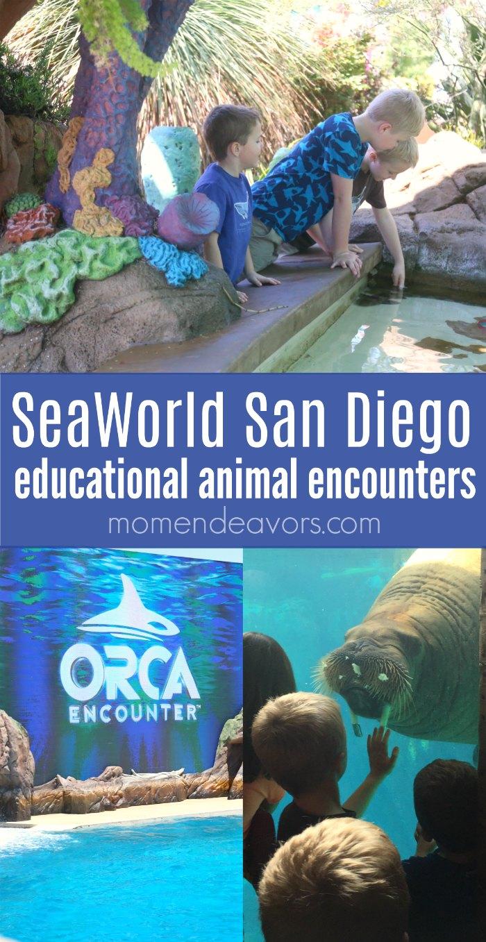 Educational Opportunities SeaWorld San Diego