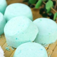 DIY Eucalyptus Shower Steamer Melts