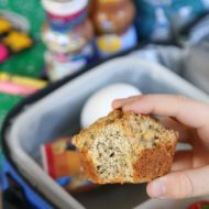 Oatmeal Muffins for Kids