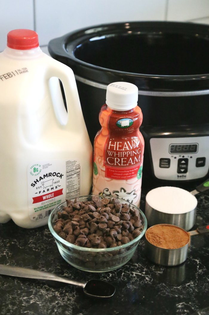 Slow Cooker Hot Chocolate Ingredients
