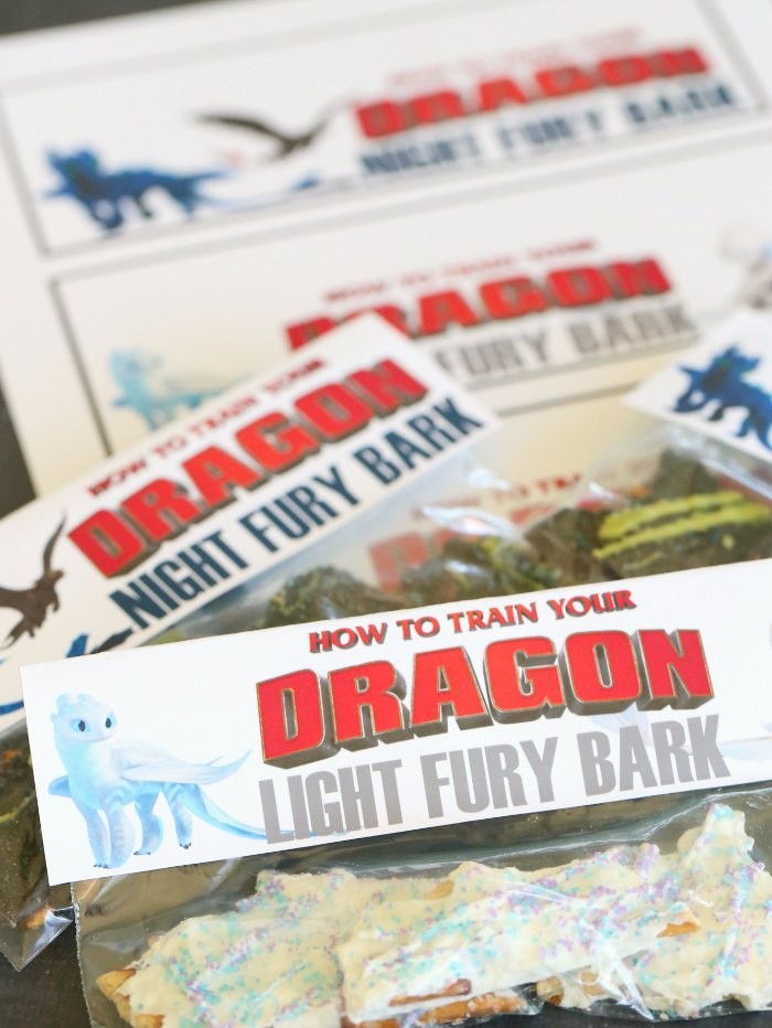 How to Train Your Dragon Party Favor