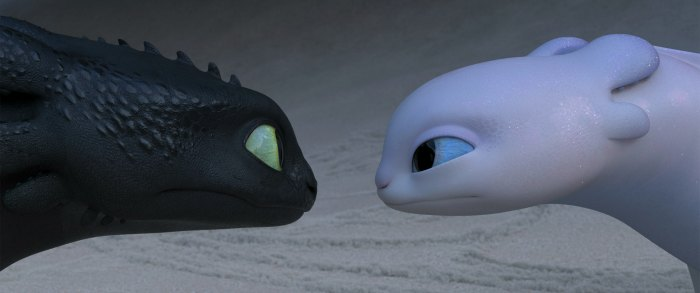 Toothless & Light Fury