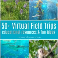 50+ Virtual Field Trips – Educational Resources & Ideas