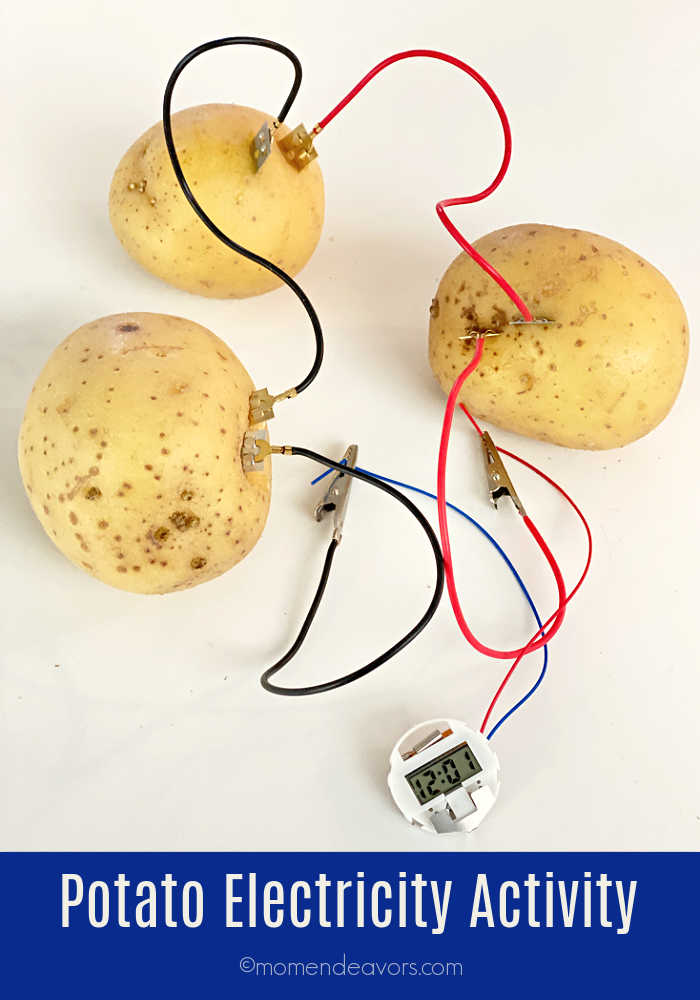 Potatoes and electrical wires to power a clock